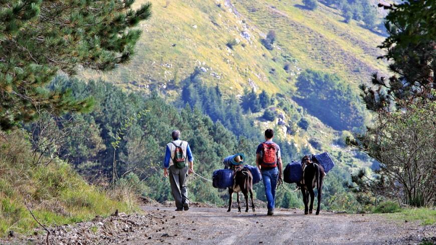 Itinerario in mountain bike o a piedi nell'Appennino