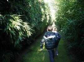 Scorci del labirinto più grande del mondo