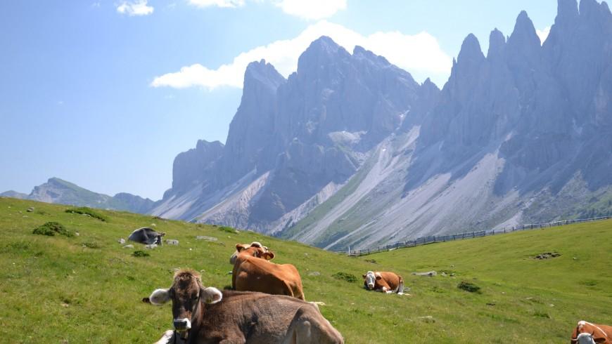 Giro delle Odle, Val di Funes, Alto Adige