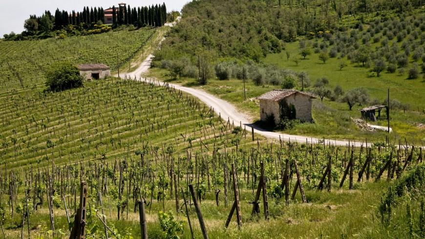 Paesaggi della Toscana, destinazione ideale per viaggi di gruppo