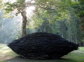 Arte Sella, il Seme, Alison Stigora