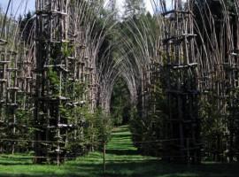 Cattedrale vegetale di Giuliano Mauri, ArteSella