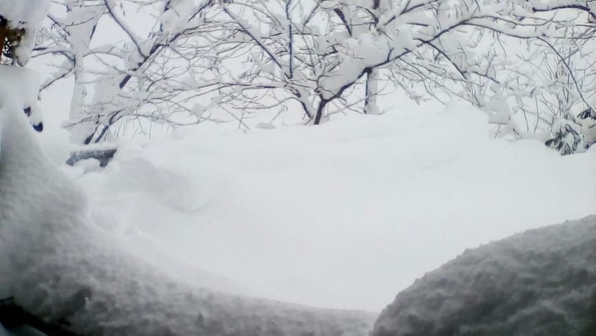 La neve - casale il baronetto colpito dal terremoto e dalla forte nevicata in Abruzzo
