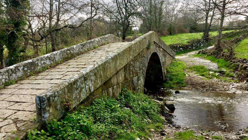 Cammino di Santiago di Compostela, il pellegrinaggio più famoso e uno dei cammini più belli del mondo