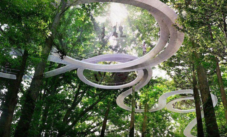 Parkorman: il parco dove si cammina tra gli alberi
