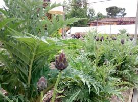 Le Serre dei Giardini - Bologna