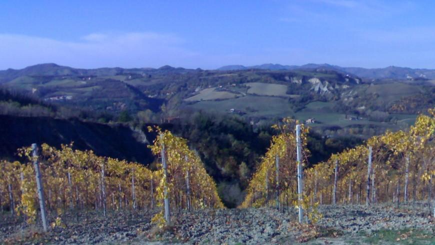 Paesaggio sulle colline dall'Agriturismo Il Cavicchio, Bologna