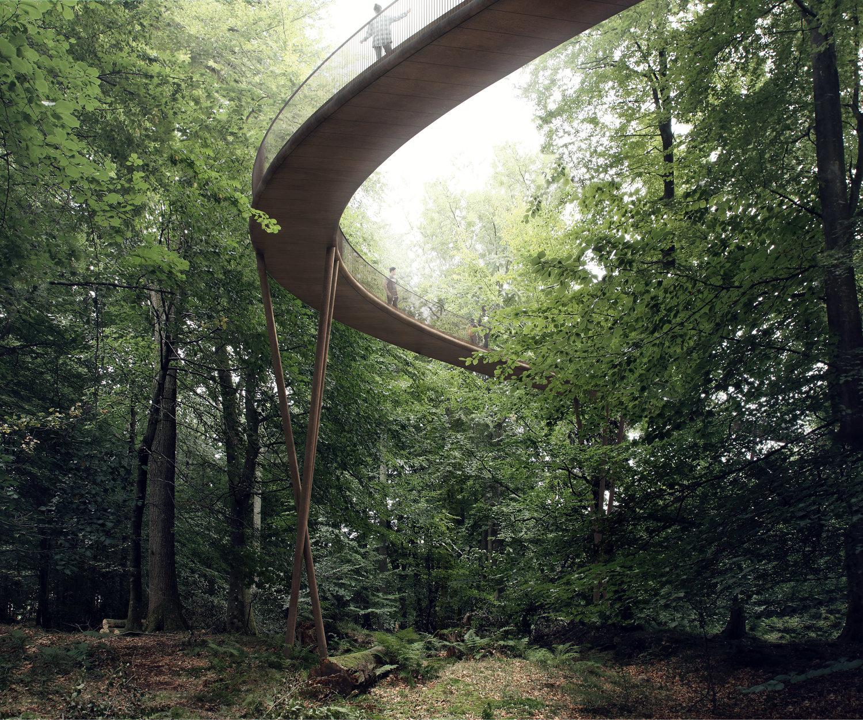 L'incredibile passeggiata sopra una foresta danese
