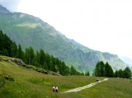 Passeggiata Plan, Moso in Val Passiria, Alto Adige