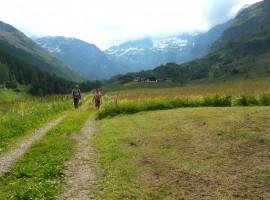 Itinerario immerso nel verde vicino a Plan, Moso in Val Passiria