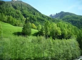 Plan, Moso in Val Passiria, Alto Adige, in Estate