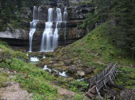 Nel bosco, verso le cascate di Vallesinella