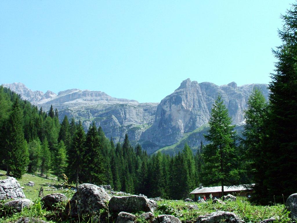 Nei boschi, verso le cascate di Vallesinella