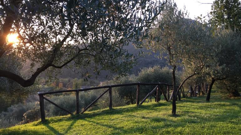 Destinazione Val di Vara, la valle più biologica d'Italia