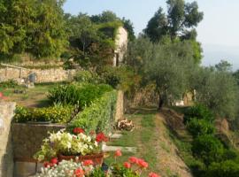 Agriturismi tra gli ulivi che valgono un viaggio