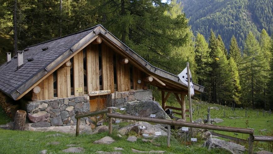 Oasi WWF di Valtrigona, boschi del Trentino