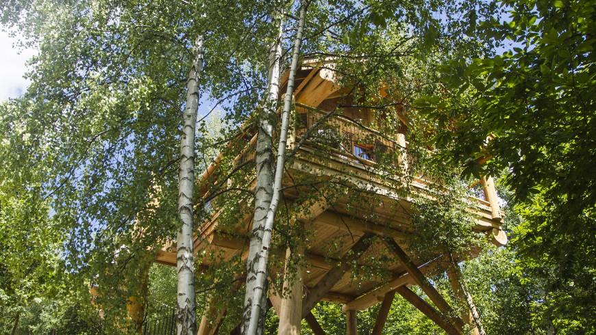 La bellissima casa sull'alberoa Pamaparato, in provincia di Cuneo, Piemonte
