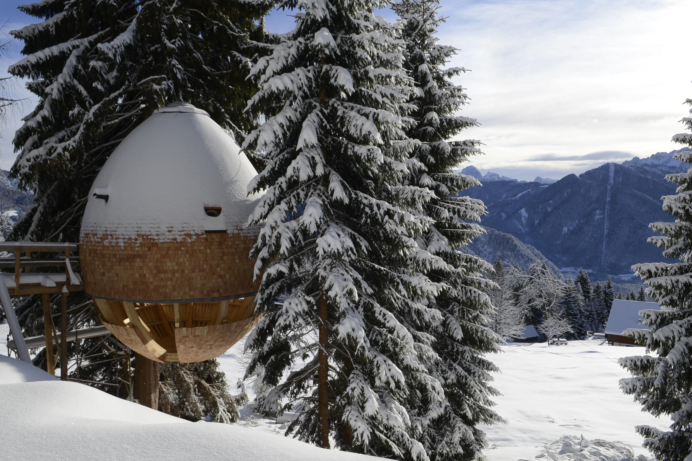 Casa sull'albero tra i boschi innevati, provincia di Udine, Alpi Giulie