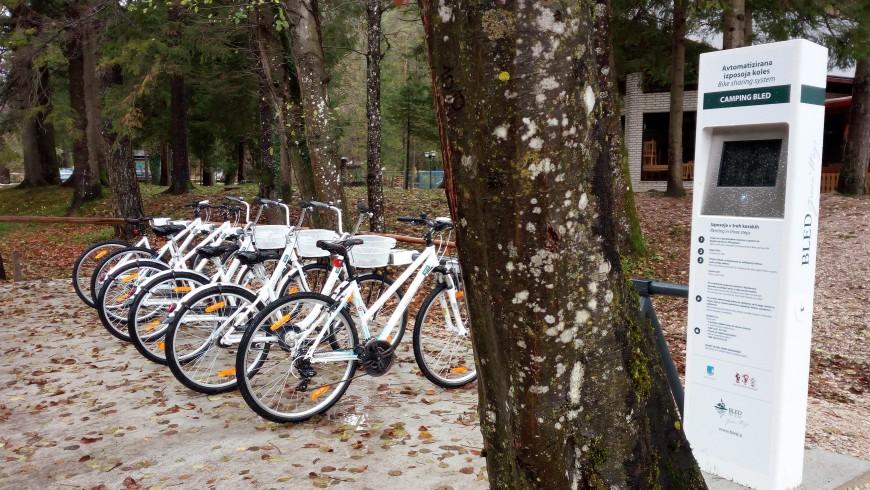 Noleggio biciclette lungo il lago, vicino al Campeggio di Bled