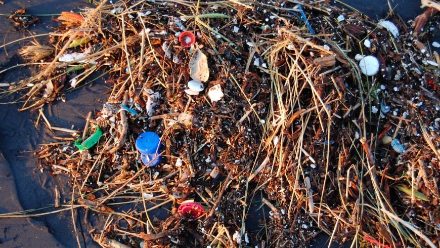 Oceano di plastica