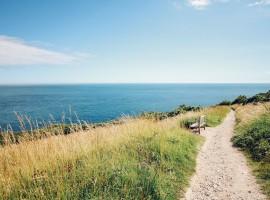 cammino nella natura