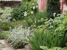 Giardino, Corte di Woodly, vacanze verdi