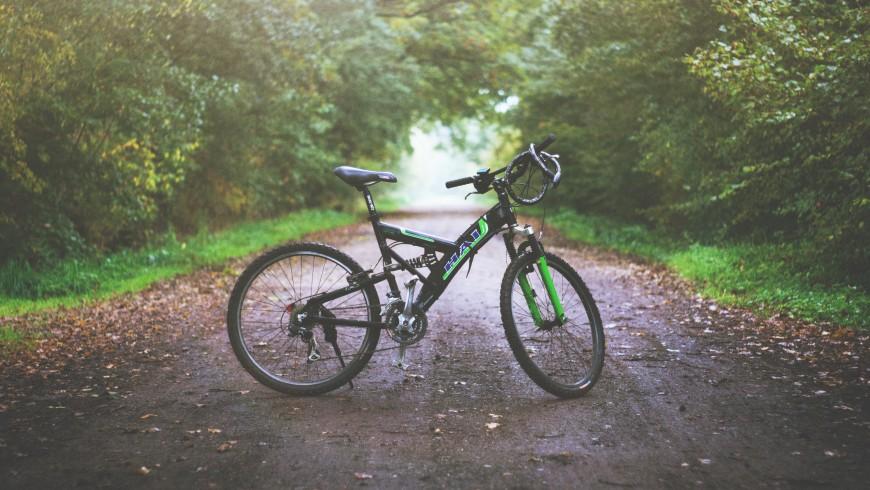 Bicicletta in mezzo ad un sentiero nel bosco, foto di Eddy Lackmann via Unsplash