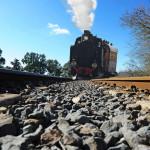 Trenino verde in una giornata di sole, mobilità slow, foto via Il Giardino di Valentina