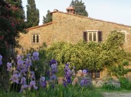 Agriturismo Poggio Pratelli, alloggi verdi