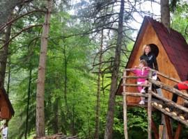 Tree Sleeping nel Parco delle Dolomiti Friulane