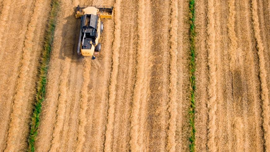 Foto di Kees Streefkerk via Unsplash, campo arato, agribusiness, difensori della terra