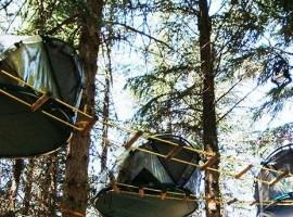Tende sugli alberi nel Parco delle Madonie (Sicilia)