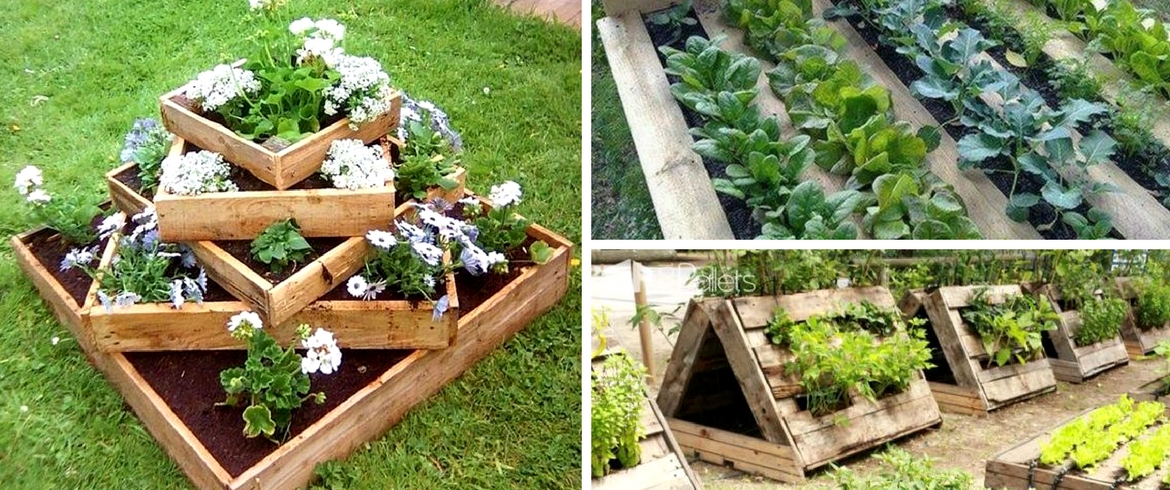Vegetable garden, pallets, DIY project