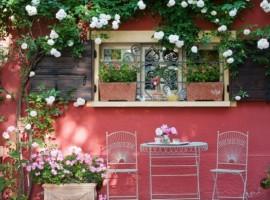 B&B Ca' delle Rose: un giardino di rose vicino Venezia
