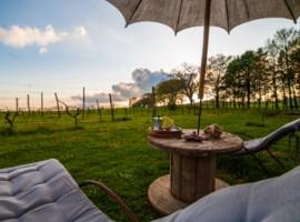 Agriturismo Biologico in Toscana per una fuga benessere