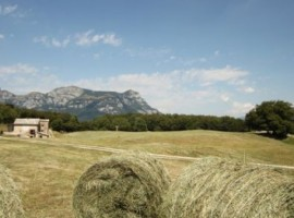 Montagne e campagna, l'accordo perfetto per la tua vacanza a contatto con la natura