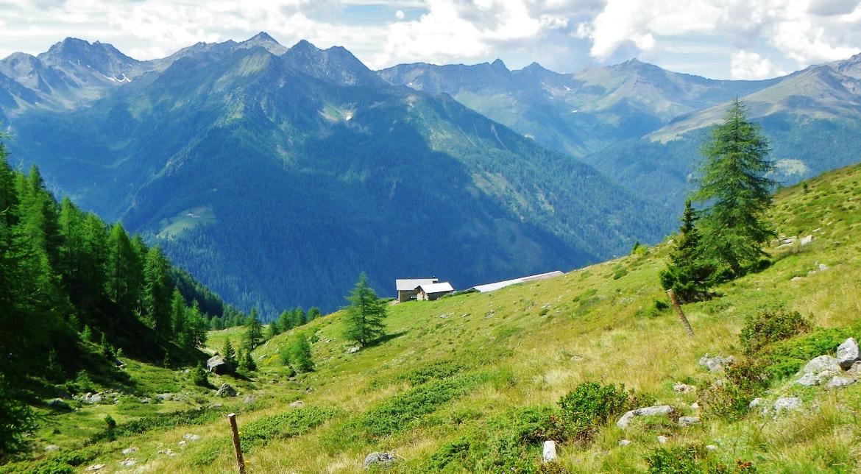 Malga Palù, 2088 metri sul livello del mare, Val di Rabbi, Parco Naturale dello Stelvio.