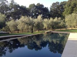 eco-resort con piscina nella Tuscia Romana
