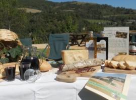 Agriturismo e fattoria didattica in Val Bidente