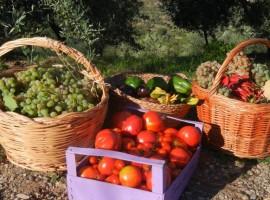 Agriturismo sostenibile in Liguria
