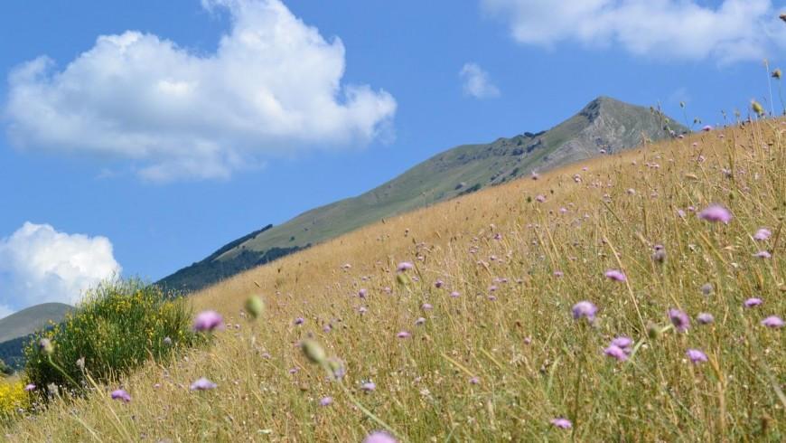 Primavera tra le vette dell'Appennino Lucano