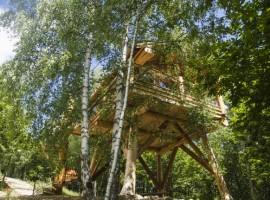 La Quiete: dormi in una casa sull'albero