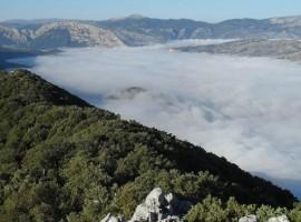 Un agriturismo biologico in Sardegna