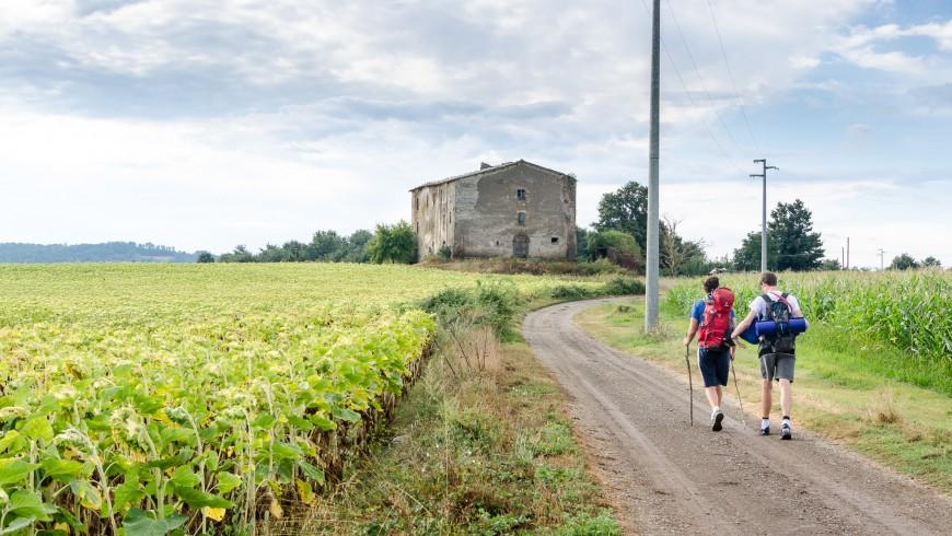Camminando per un sentiero della via Francigena
