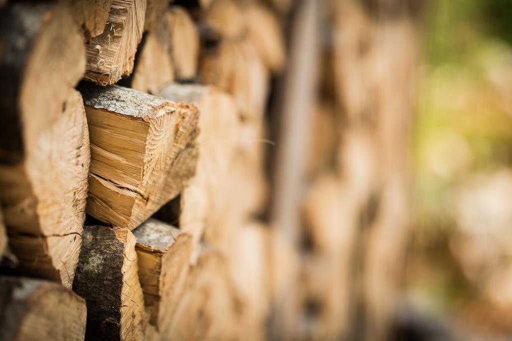 legna, alla casa di legno aunus
