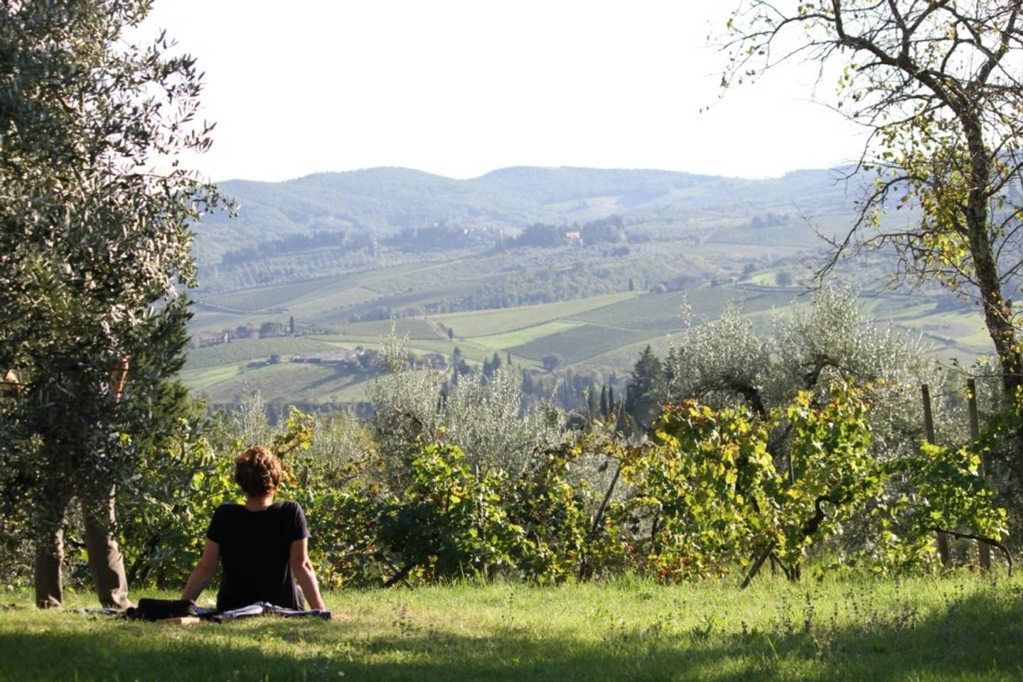 Ancora del Chianti, paesaggio mozzafiato sulle verdi colline del Chianti