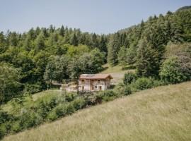 chalet Odomi circondato dai boschi in Trentino