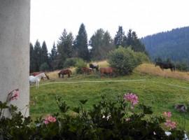B&B Ai Marchetini, maso eco-friendly in Trentino Alto Adige