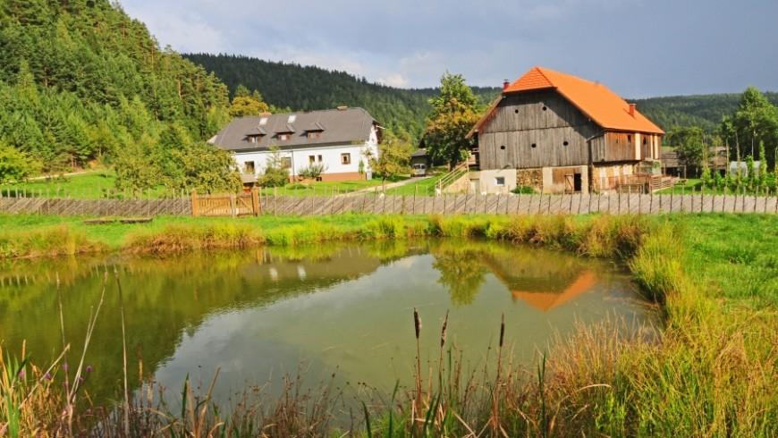 agriturismo Mikl in Slovenia