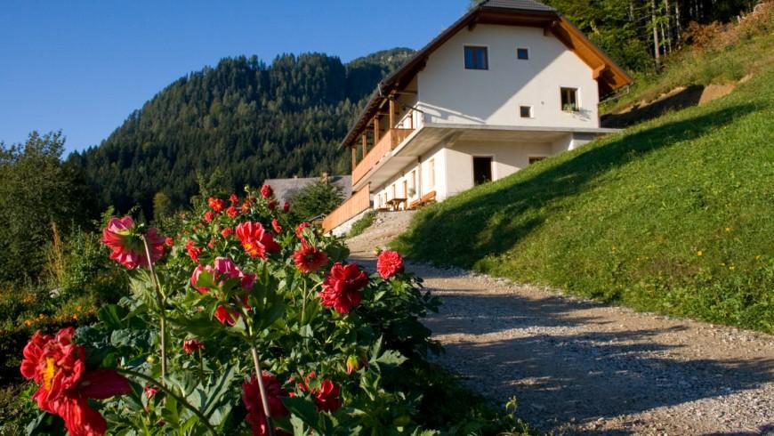 Una vacanza attiva tra le montagne della Slovenia